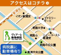 ヴィアーレ動物病院の地図