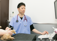 心臓病の検査